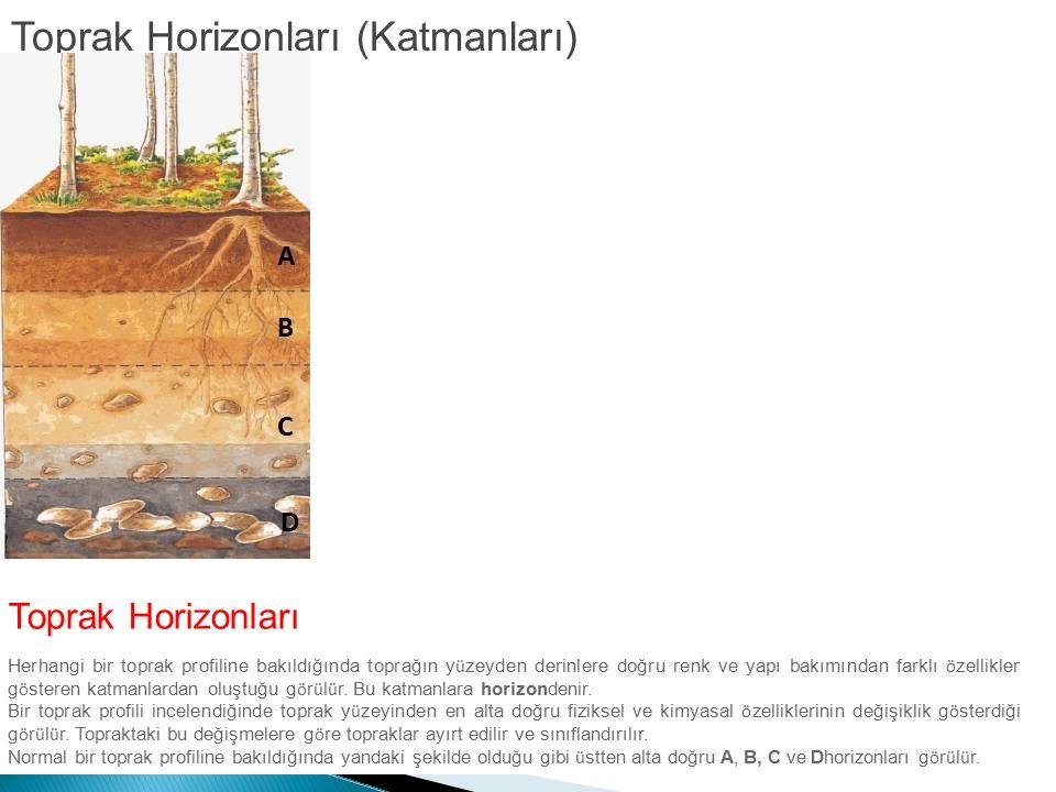 Toprak Horizonları (Katmanları) Toprak Horizonları Herhangi bir toprak profiline bakıldığında toprağın y ü zeyden derinlere doğru renk ve yapı bakımın
