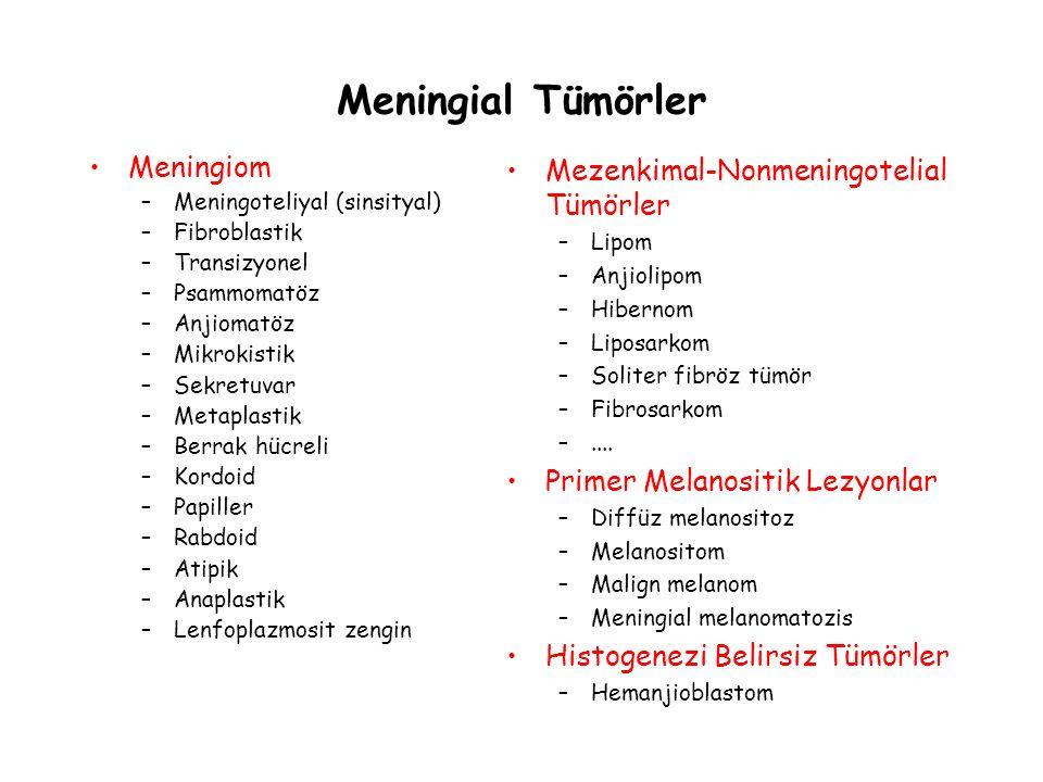 Meningial Tümörler Meningiom –Meningoteliyal (sinsityal) –Fibroblastik –Transizyonel –Psammomatöz –Anjiomatöz –Mikrokistik –Sekretuvar –Metaplastik –B