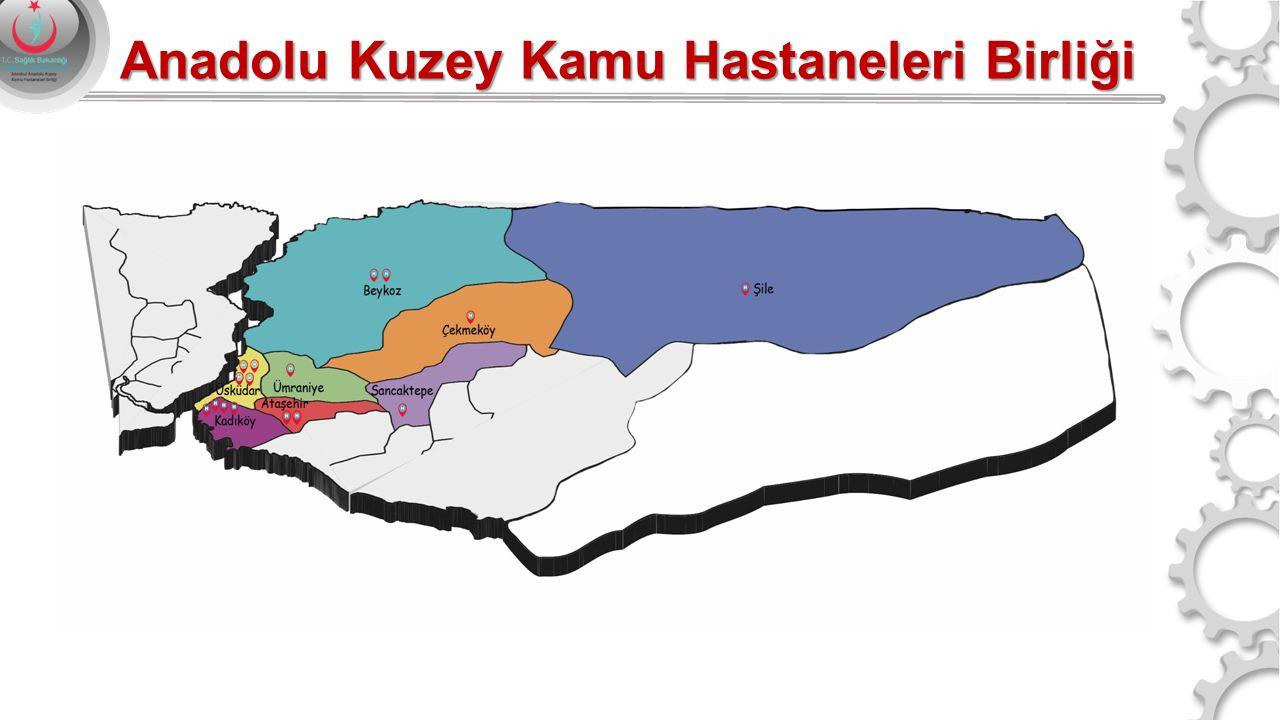 % 50,6 %49,4 % 6,8 % 13,2 % 14,4 % 28,7 % 8,7 % 7,4 % 14,4 % 14,9 % 28,3 % 28,7 % 6,3 BÖLGE NÜFUSU 2.898.684 Anadolu Kuzey Kamu Hastaneleri Birliği