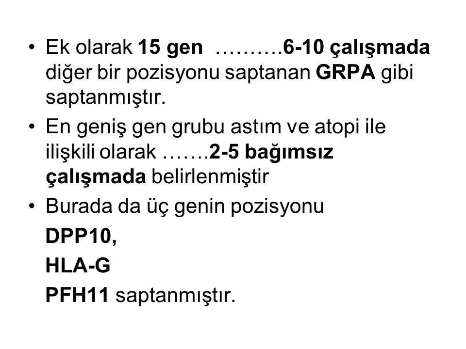Ek olarak 15 gen ……….6-10 çalışmada diğer bir pozisyonu saptanan GRPA gibi saptanmıştır. En geniş gen grubu astım ve atopi ile ilişkili olarak …….2-5