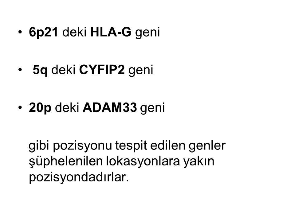 6p21 deki HLA-G geni 5q deki CYFIP2 geni 20p deki ADAM33 geni gibi pozisyonu tespit edilen genler şüphelenilen lokasyonlara yakın pozisyondadırlar.