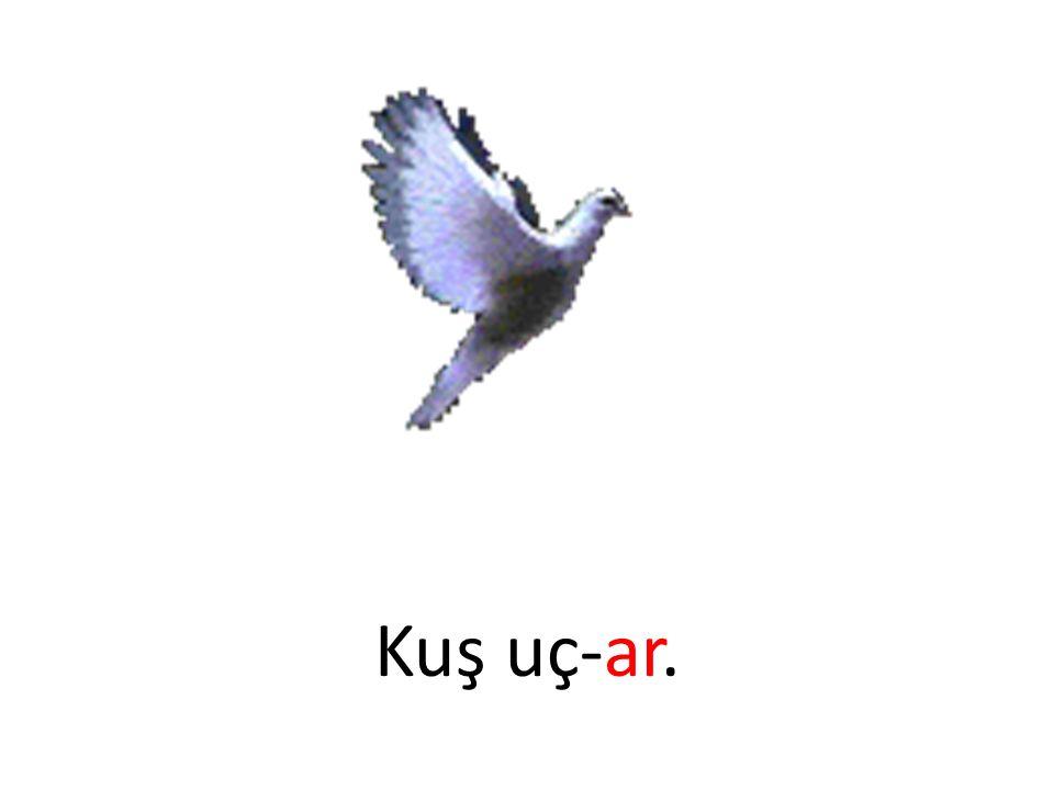 Kuş uç-ar.