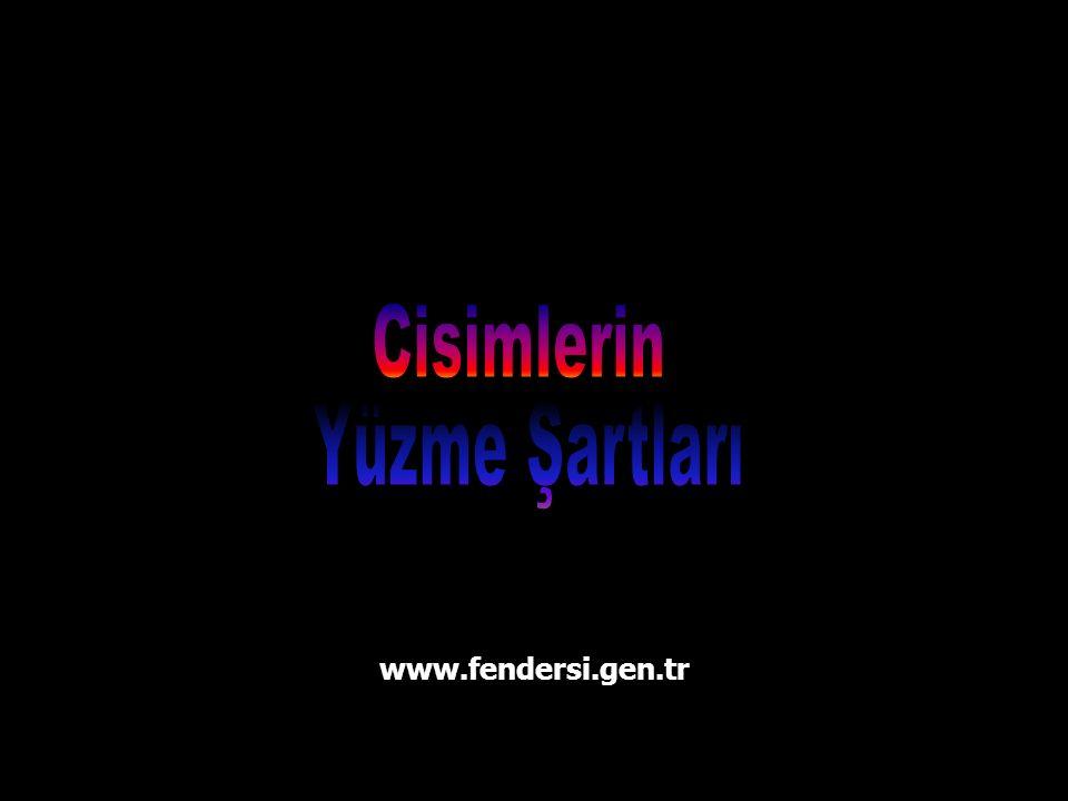 www.fendersi.gen.tr