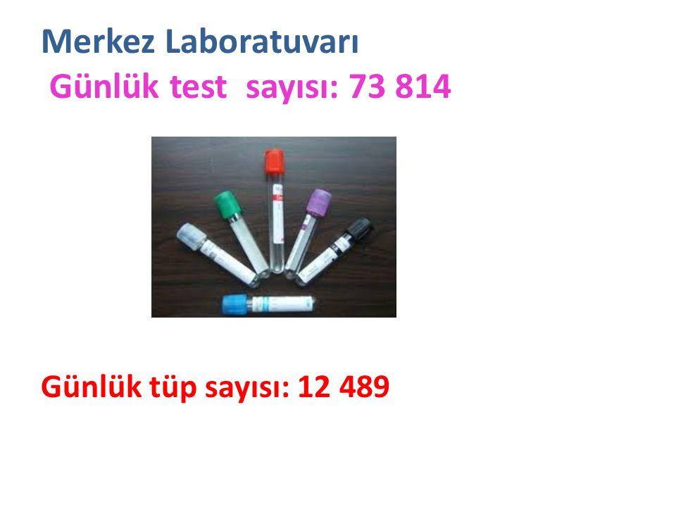 Merkez Laboratuvarı Günlük test sayısı: 73 814 Günlük tüp sayısı: 12 489