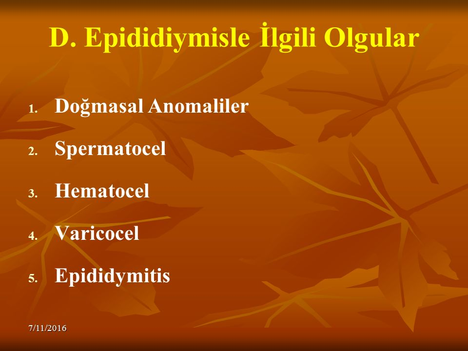 D. Epididiymisle İlgili Olgular 1. 1. Doğmasal Anomaliler 2. 2. Spermatocel 3. 3. Hematocel 4. 4. Varicocel 5. 5. Epididymitis 7/11/2016