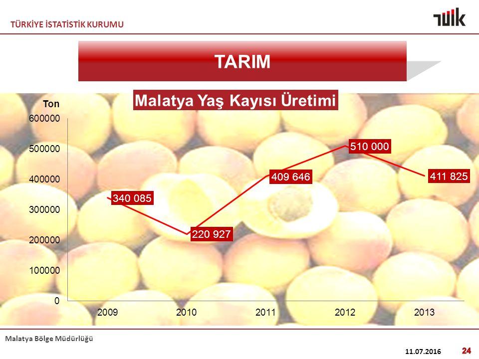 TÜRKİYE İSTATİSTİK KURUMU Malatya Bölge Müdürlüğü 11.07.2016 24 TARIM