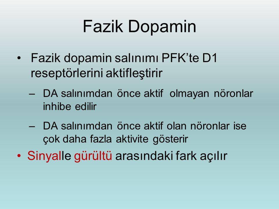 Fazik Dopamin Fazik dopamin salınımı PFK'te D1 reseptörlerini aktifleştirir –DA salınımdan önce aktif olmayan nöronlar inhibe edilir –DA salınımdan ön
