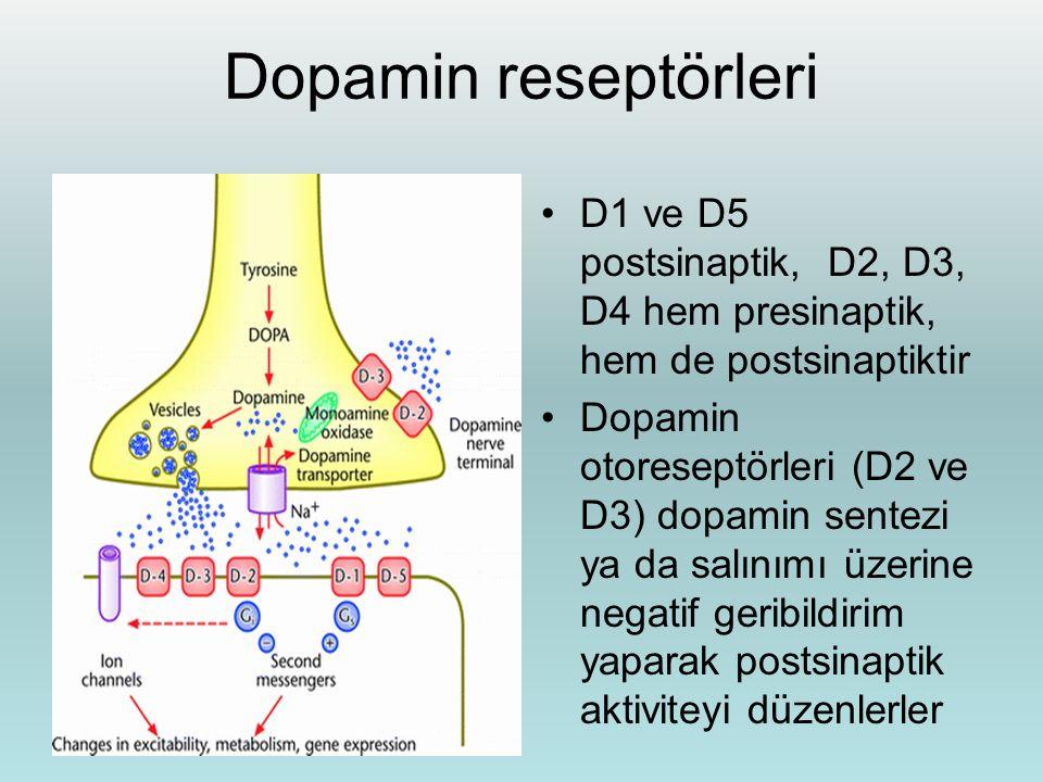 Dopamin reseptörleri D1 ve D5 postsinaptik, D2, D3, D4 hem presinaptik, hem de postsinaptiktir Dopamin otoreseptörleri (D2 ve D3) dopamin sentezi ya d