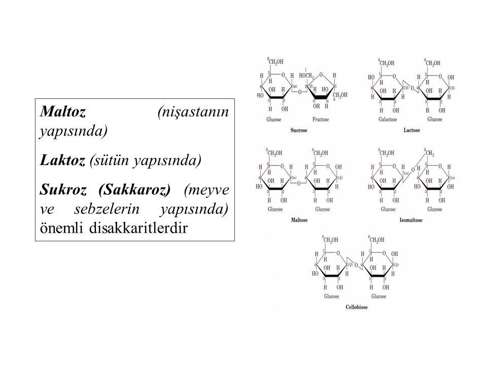 Maltoz (nişastanın yapısında) Laktoz (sütün yapısında) Sukroz (Sakkaroz) (meyve ve sebzelerin yapısında) önemli disakkaritlerdir
