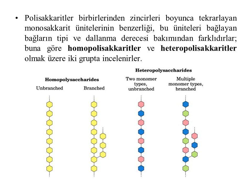 Polisakkaritler birbirlerinden zincirleri boyunca tekrarlayan monosakkarit ünitelerinin benzerliği, bu üniteleri bağlayan bağların tipi ve dallanma de