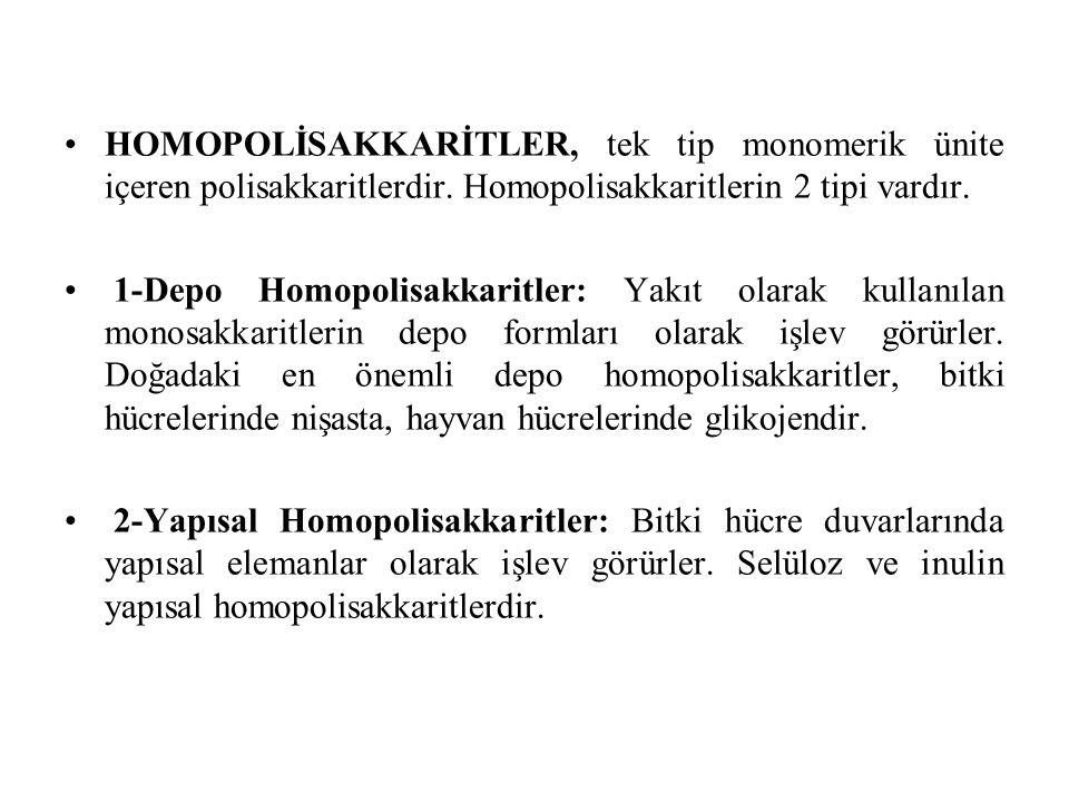 HOMOPOLİSAKKARİTLER, tek tip monomerik ünite içeren polisakkaritlerdir. Homopolisakkaritlerin 2 tipi vardır. 1-Depo Homopolisakkaritler: Yakıt olarak