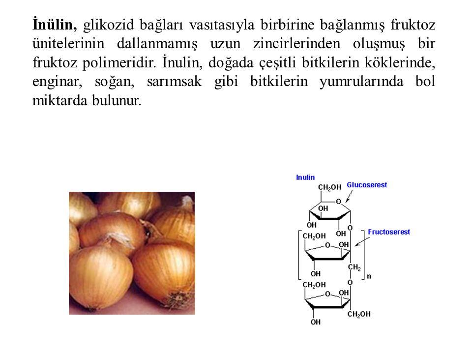 İnülin, glikozid bağları vasıtasıyla birbirine bağlanmış fruktoz ünitelerinin dallanmamış uzun zincirlerinden oluşmuş bir fruktoz polimeridir. İnulin,