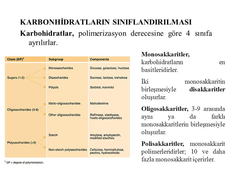 Karbonhidrat sindirimi, midedeki yüksek asiditenin tükrük α- amilaz'ını inaktive etmesi nedeniyle midede duraksar.