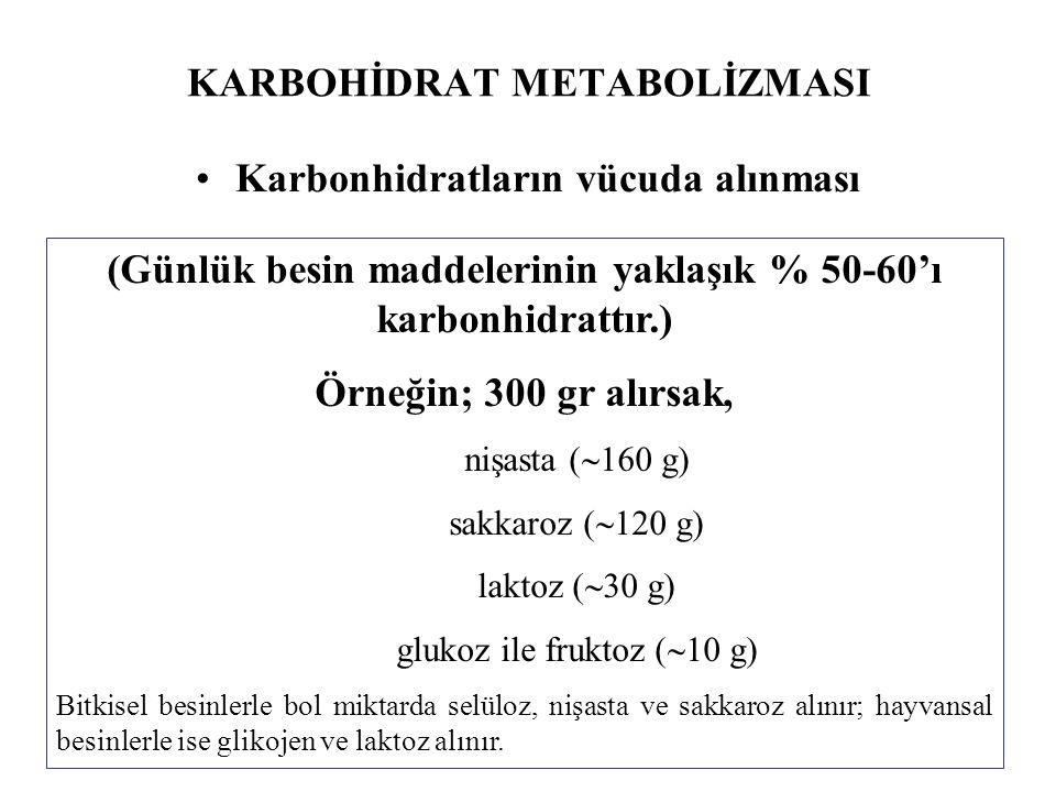 KARBOHİDRAT METABOLİZMASI Karbonhidratların vücuda alınması (Günlük besin maddelerinin yaklaşık % 50-60'ı karbonhidrattır.) Örneğin; 300 gr alırsak, n