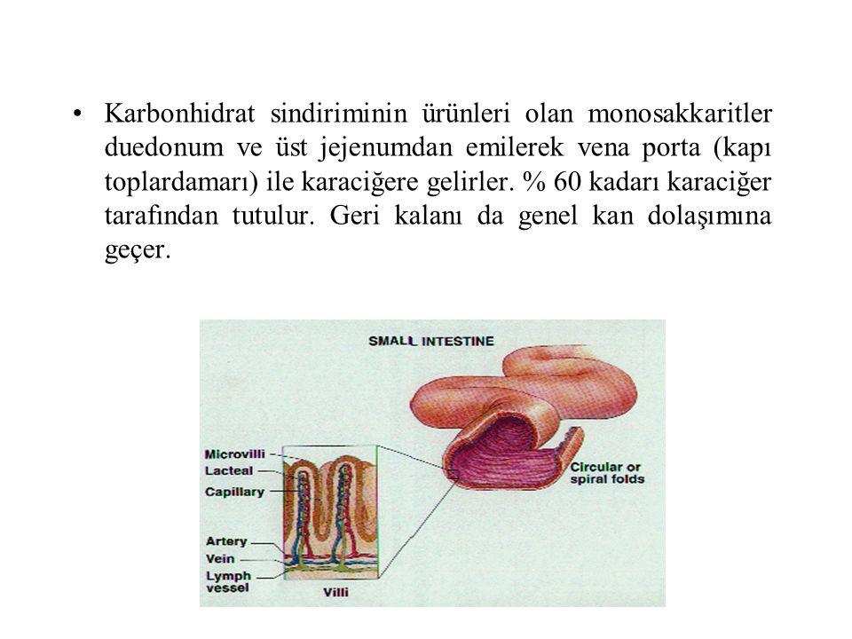 Karbonhidrat sindiriminin ürünleri olan monosakkaritler duedonum ve üst jejenumdan emilerek vena porta (kapı toplardamarı) ile karaciğere gelirler. %