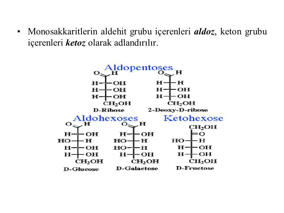 depo homopolisakkaritler Nişasta Glikojen yapısal homopolisakkaritler Sellüloz İnulin Homopolisakkaritler