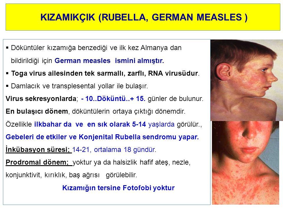 KIZAMIKÇIK (RUBELLA, GERMAN MEASLES )  Döküntüler kızamığa benzediği ve ilk kez Almanya dan bildirildiği için German measles ismini almıştır.