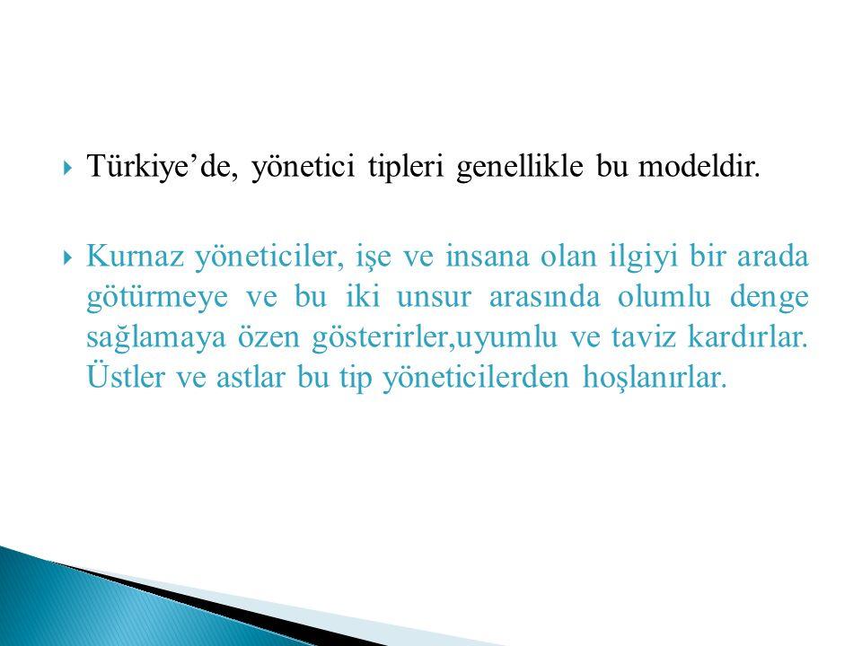  Türkiye'de, yönetici tipleri genellikle bu modeldir.