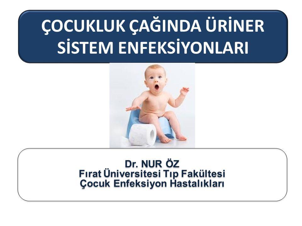 ÇOCUKLUK ÇAĞINDA ÜRİNER SİSTEM ENFEKSİYONLARI Dr. NUR ÖZ Fırat Üniversitesi Tıp Fakültesi Çocuk Enfeksiyon Hastalıkları Dr. NUR ÖZ Fırat Üniversitesi