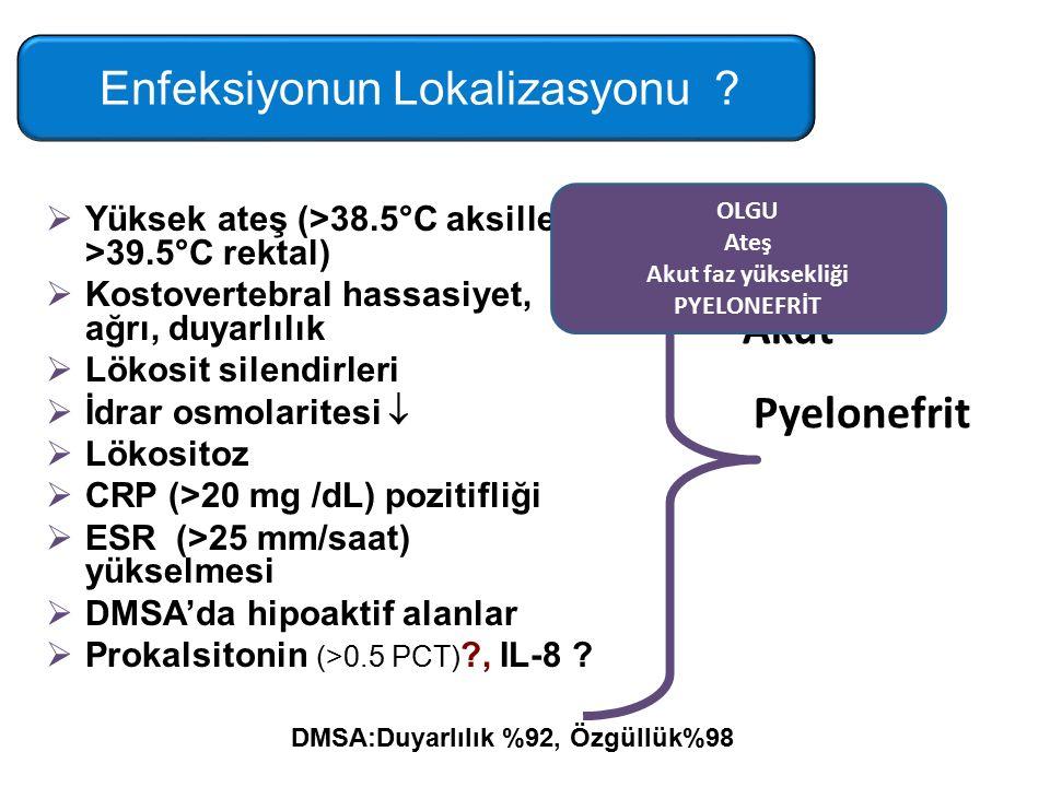  Yüksek ateş (>38.5°C aksiller, >39.5°C rektal)  Kostovertebral hassasiyet, ağrı, duyarlılık  Lökosit silendirleri  İdrar osmolaritesi   Lökositoz  CRP (>20 mg /dL) pozitifliği  ESR (>25 mm/saat) yükselmesi  DMSA'da hipoaktif alanlar  Prokalsitonin (>0.5 PCT) ?, IL-8 .