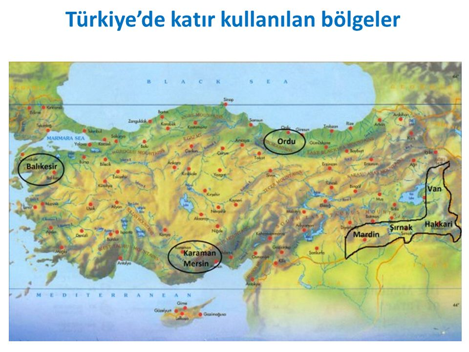 Türkiye'de katır kullanılan bölgeler