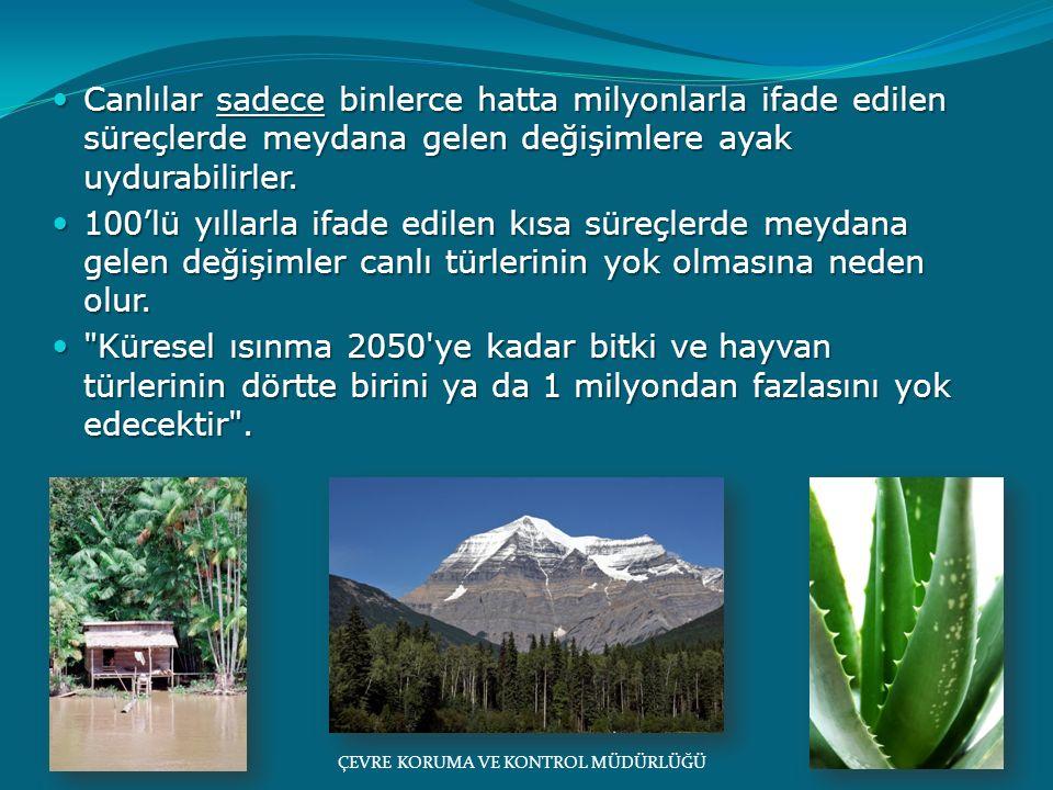 Büyük bir kısmı Yarı-Kurak bir iklimin etkisi altında olan Türkiye küresel ısınmadan en fazla etkilenecek ülkelerin başında geliyor.