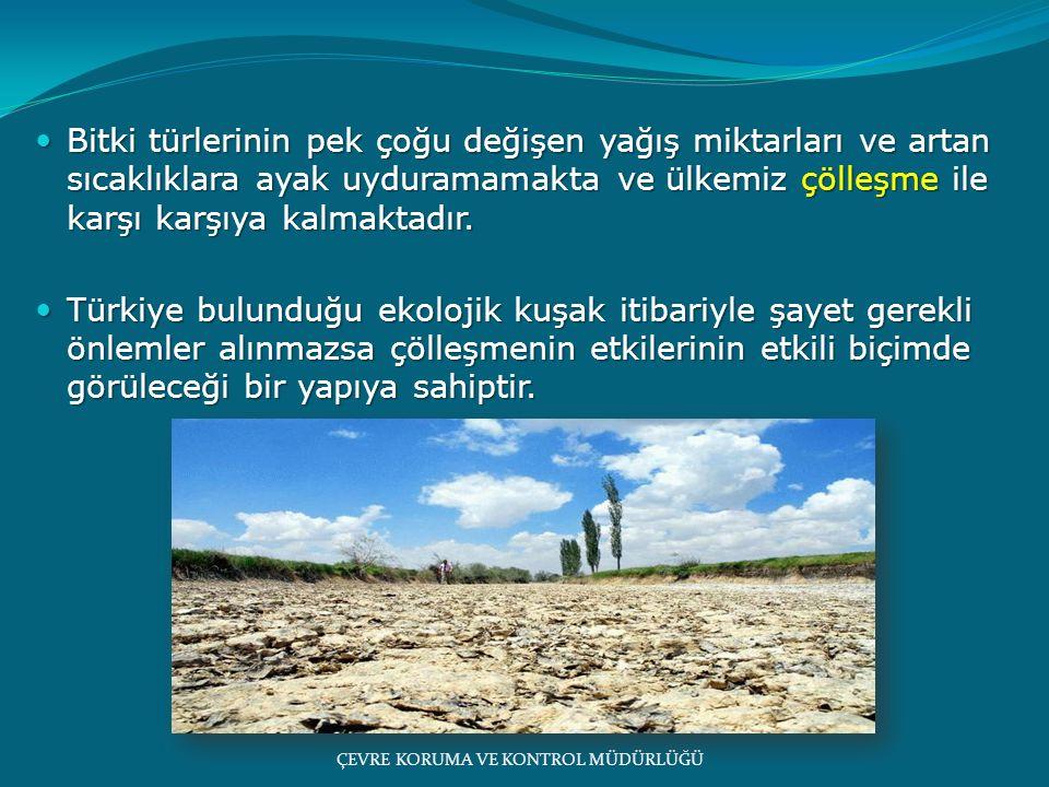 1960'lı yıllarda Konya - Karapınar'da meydana gelen çölleşme Türkiye'nin ekolojik olarak ne kadar hassas olduğunu göstermiştir.