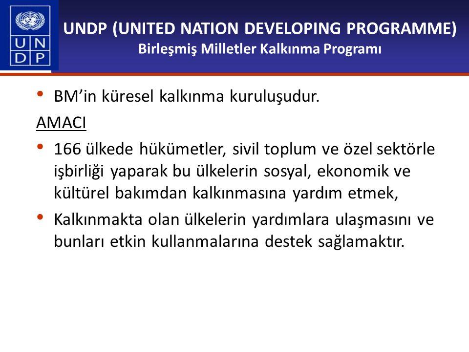 UNDP (UNITED NATION DEVELOPING PROGRAMME) Birleşmiş Milletler Kalkınma Programı BM'in küresel kalkınma kuruluşudur. AMACI 166 ülkede hükümetler, sivil