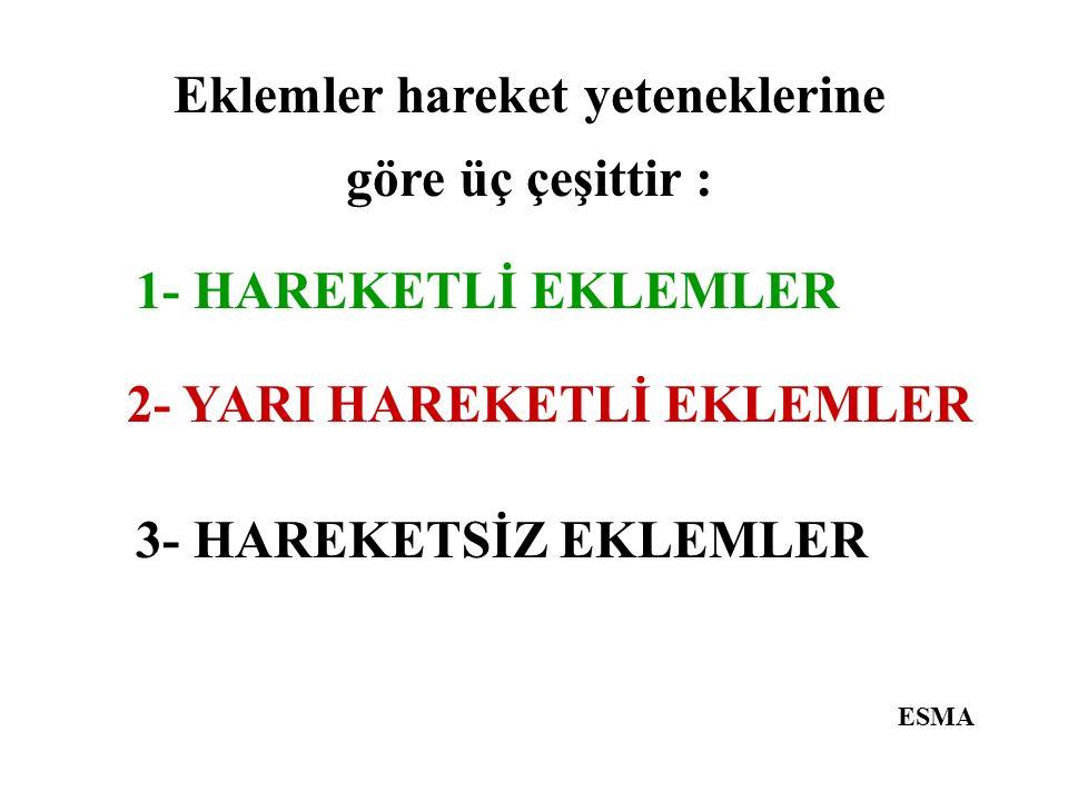 Eklemler hareket yeteneklerine göre üç çeşittir : ESMA 3- HAREKETSİZ EKLEMLER 2- YARI HAREKETLİ EKLEMLER 1- HAREKETLİ EKLEMLER