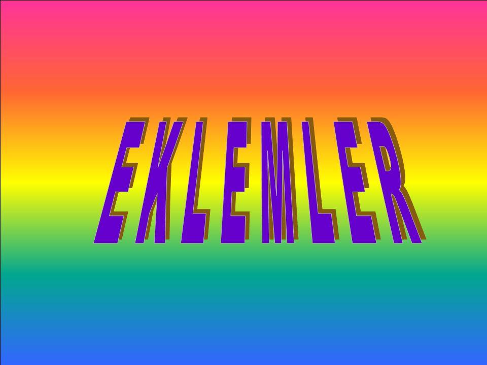 Kemikleri birbirlerine bağlayan yapılara EKLEM adı verilir. ESMA