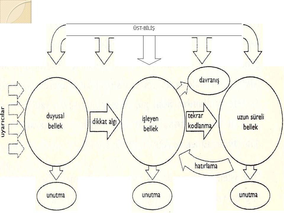 Bilgiyi işleme modelinin işleyişi 2 ÜST-BİLİŞ