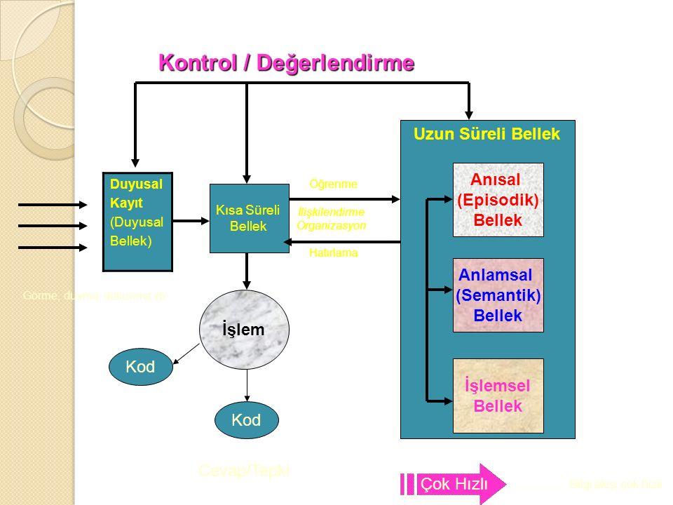 Kontrol Mekanizması-ÜSTB İ L İ Ş Bilgilerin uzun süreli bellekten nasıl geri getirilece ğ ini, hangi formda geri getirilece ğ ini, ne kadar ayrıntısına inilece ğ ini, bu bilgilerin nasıl kullanılaca ğ ını ve bireyin yanıtını ya da davranışını nasıl yönlendirece ğ ini kontrol eder.