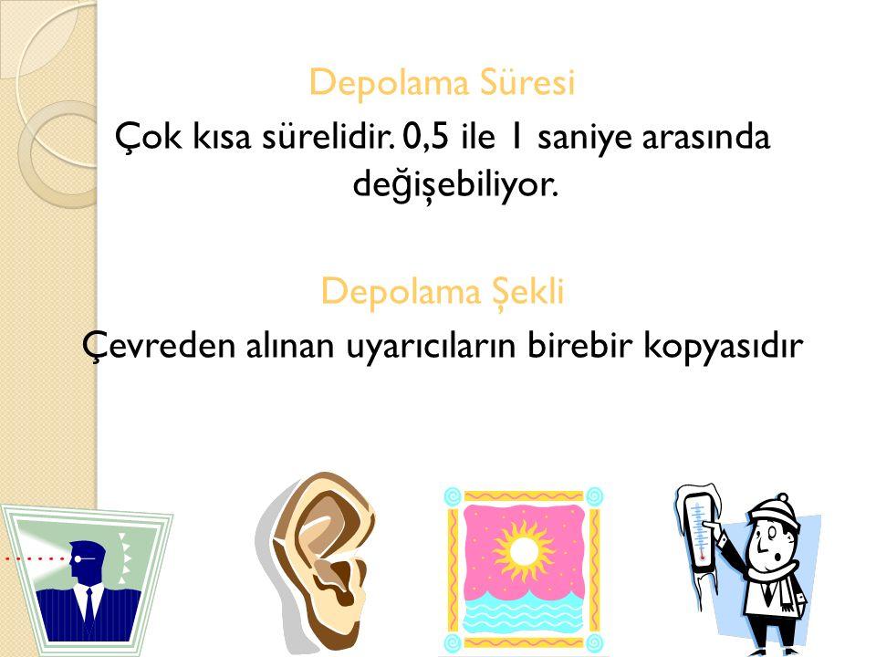 ANLAMLANDIRMA STRATEJ İ LER İ Görsel bellek destekleyicilere örnek olarak anahtar sözcük yöntemi verilebilir.