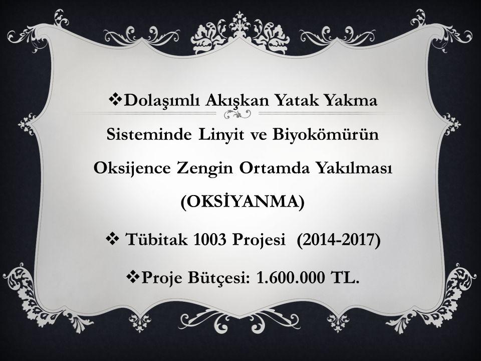  Dolaşımlı Akışkan Yatak Yakma Sisteminde Linyit ve Biyokömürün Oksijence Zengin Ortamda Yakılması (OKSİYANMA)  Tübitak 1003 Projesi (2014-2017)  Proje Bütçesi: 1.600.000 TL.