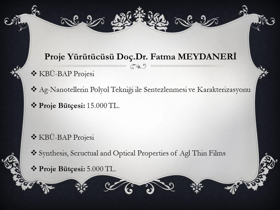 Proje Yürütücüsü Doç.Dr.
