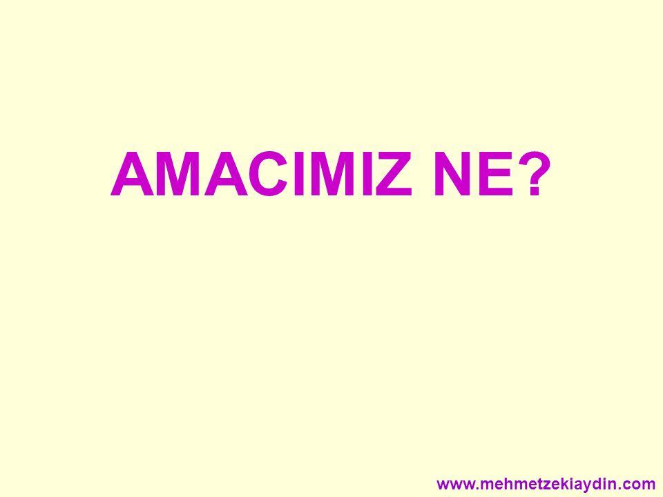 AMACIMIZ NE www.mehmetzekiaydin.com