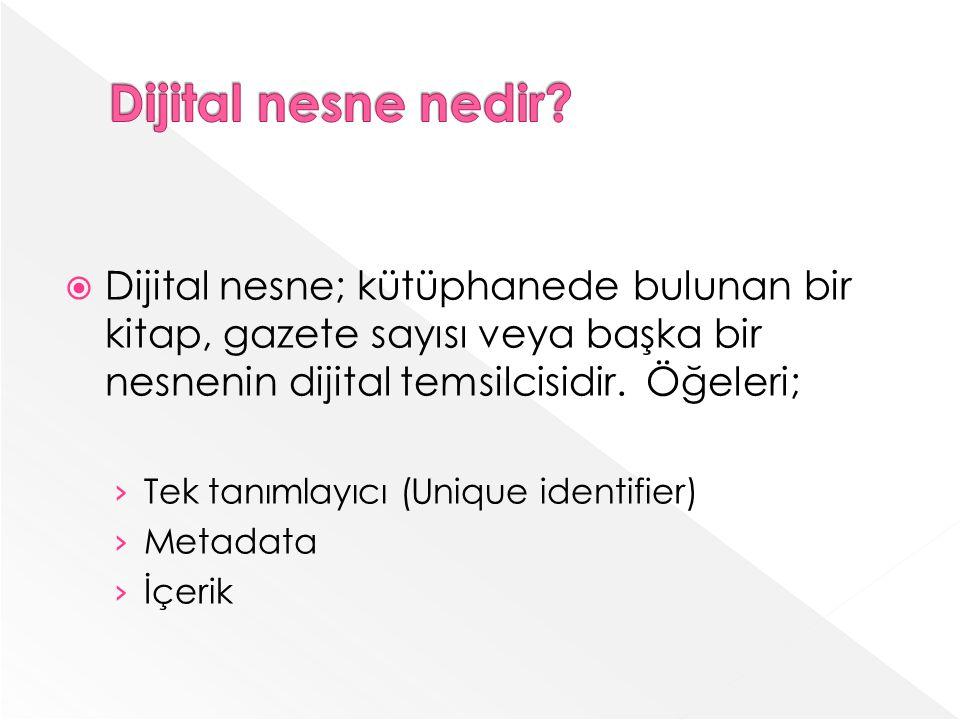 Dijital nesne; kütüphanede bulunan bir kitap, gazete sayısı veya başka bir nesnenin dijital temsilcisidir.