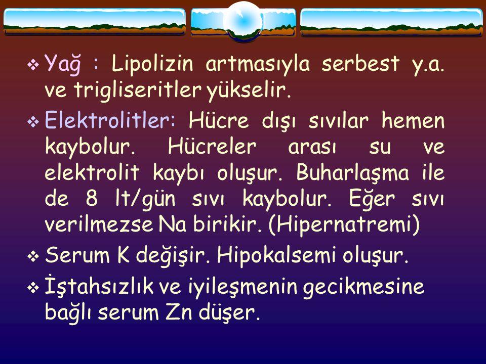  Yağ : Lipolizin artmasıyla serbest y.a. ve trigliseritler yükselir.