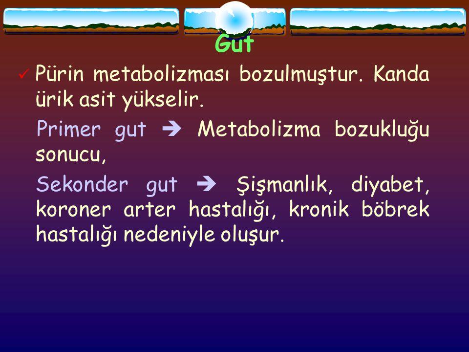 Gut Pürin metabolizması bozulmuştur. Kanda ürik asit yükselir.
