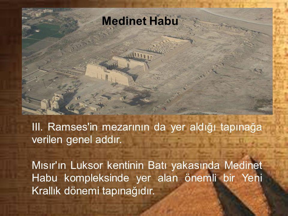 Medinet Habu III. Ramses'in mezarının da yer aldığı tapınağa verilen genel addır. Mısır'ın Luksor kentinin Batı yakasında Medinet Habu kompleksinde ye