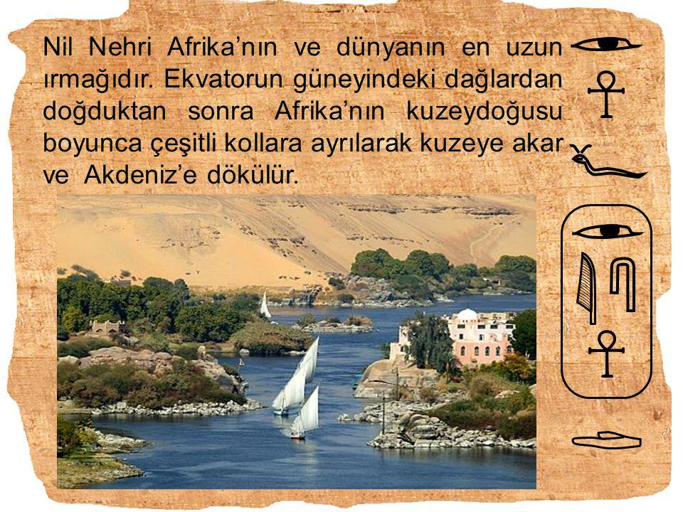 Nil Nehri Afrika'nın ve dünyanın en uzun ırmağıdır. Ekvatorun güneyindeki dağlardan doğduktan sonra Afrika'nın kuzeydoğusu boyunca çeşitli kollara ayr