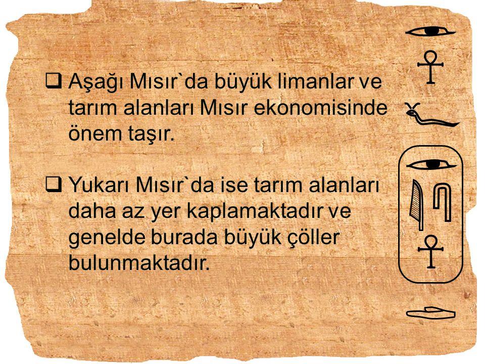 HİYEROGLİF Hiyeroglif yazısı çeşitli yaratık, eşya ve eşyalarla ilgili düşünceleri temsil eden ilkel resim ve işaretlerden meydana gelir.