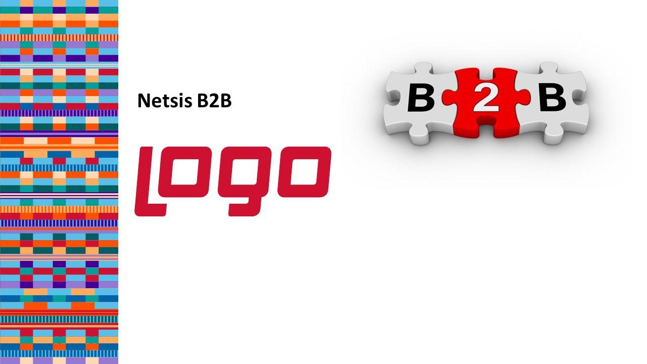 Netsis B2B