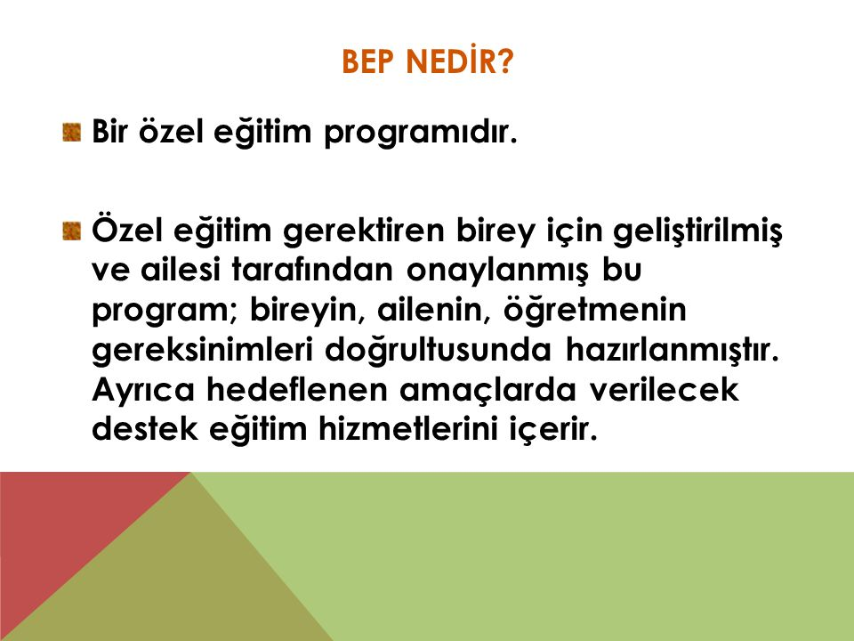 BEP NEDİR. Bir özel eğitim programıdır.