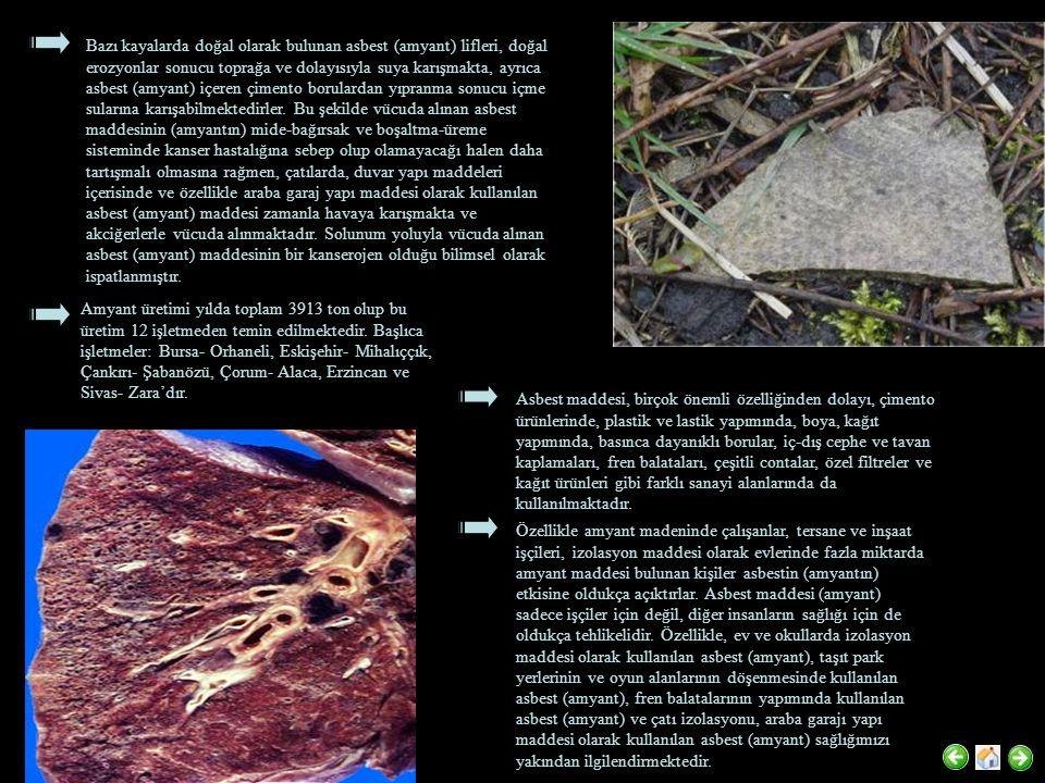 Bazı kayalarda doğal olarak bulunan asbest (amyant) lifleri, doğal erozyonlar sonucu toprağa ve dolayısıyla suya karışmakta, ayrıca asbest (amyant) iç