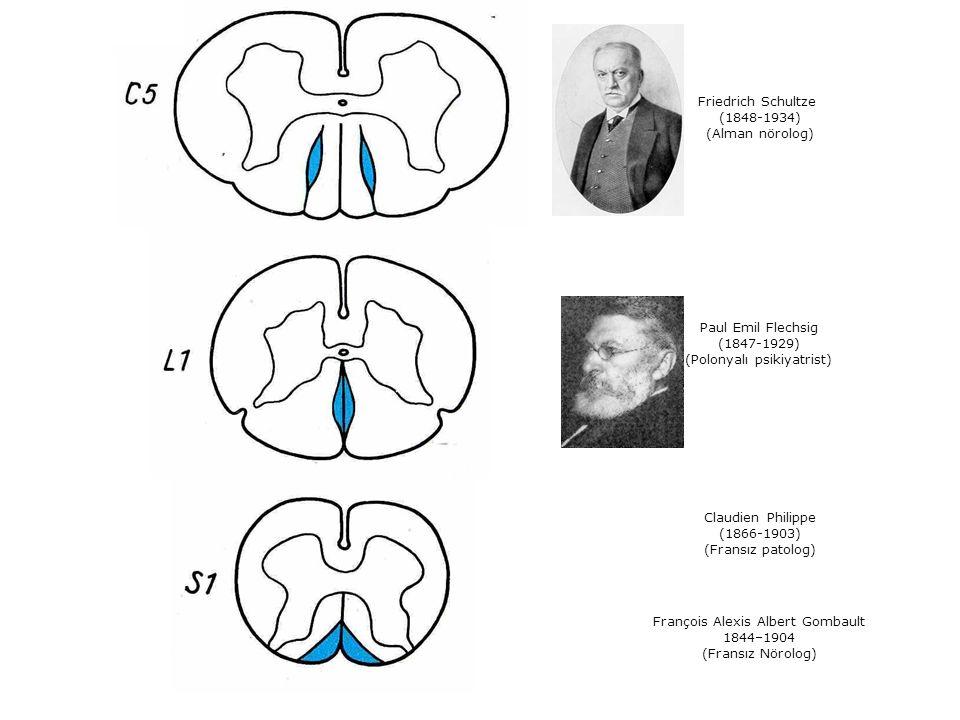 Paul Emil Flechsig (1847-1929) (Polonyalı psikiyatrist) Claudien Philippe (1866-1903) (Fransız patolog) Friedrich Schultze (1848-1934) (Alman nörolog)