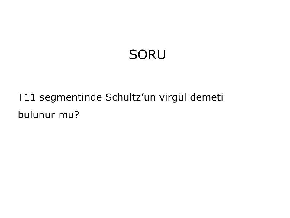 SORU T11 segmentinde Schultz'un virgül demeti bulunur mu?