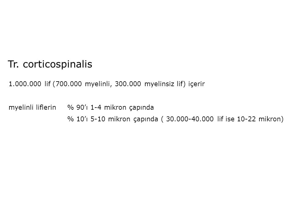 Tr. corticospinalis 1.000.000 lif (700.000 myelinli, 300.000 myelinsiz lif) içerir myelinli liflerin % 90'ı 1-4 mikron çapında % 10'ı 5-10 mikron çapı