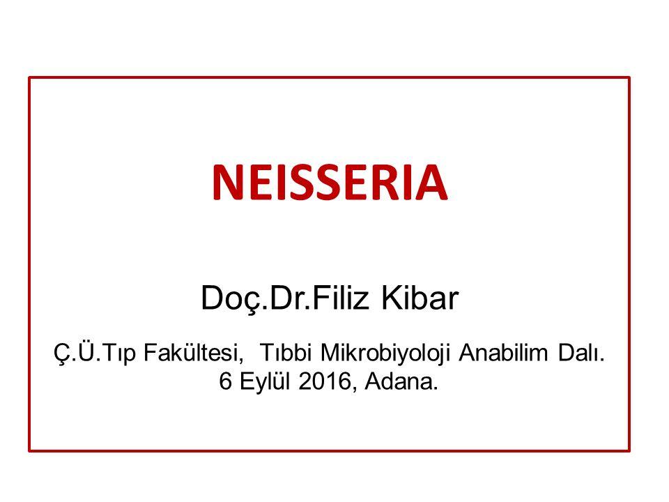 NEISSERIA Doç.Dr.Filiz Kibar Ç.Ü.Tıp Fakültesi, Tıbbi Mikrobiyoloji Anabilim Dalı. 6 Eylül 2016, Adana.