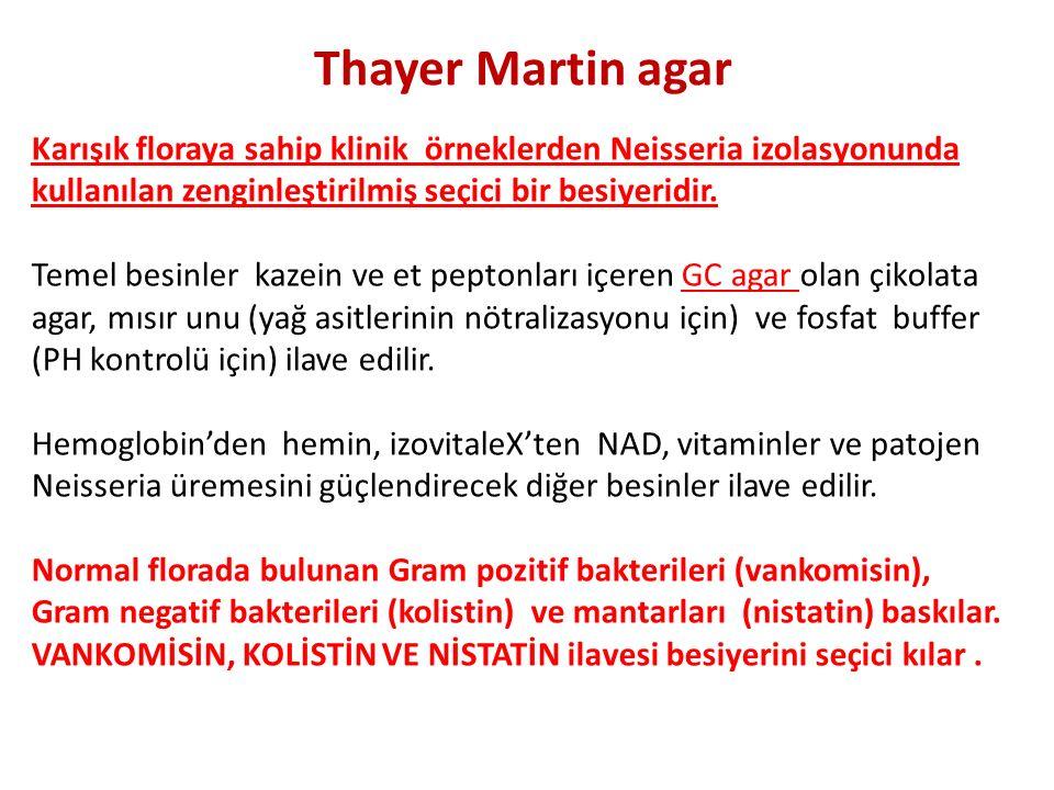 Thayer Martin agar Karışık floraya sahip klinik örneklerden Neisseria izolasyonunda kullanılan zenginleştirilmiş seçici bir besiyeridir. Temel besinle